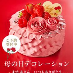 価格:3888円(税込) 商品サイズ:13cm(4~6名様用)
